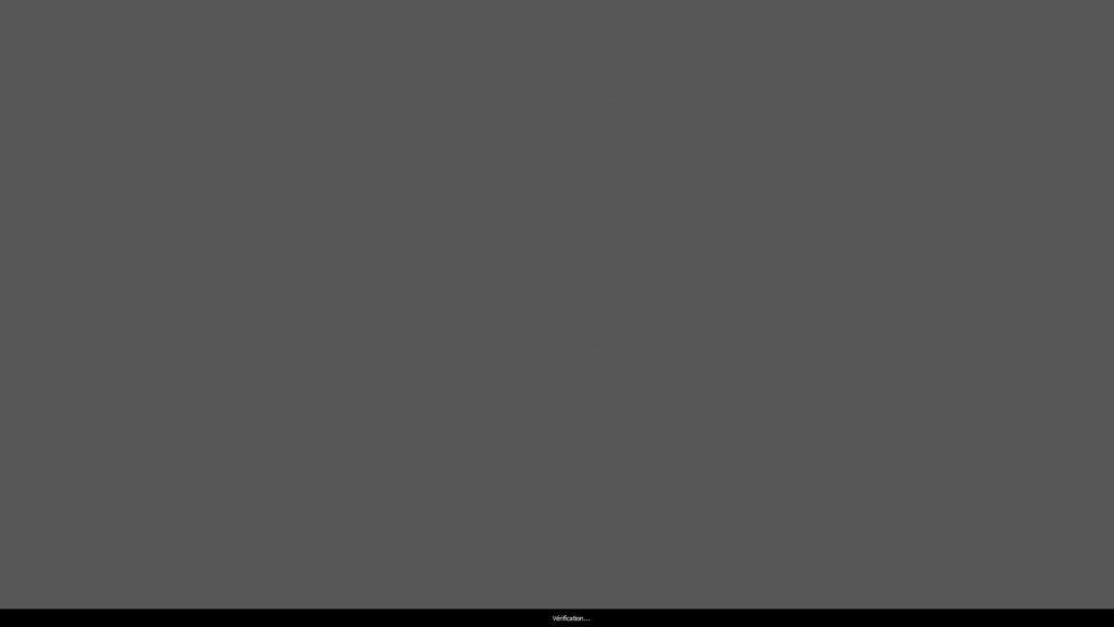 Calibration écran - i1profiler - Vérification des patchs